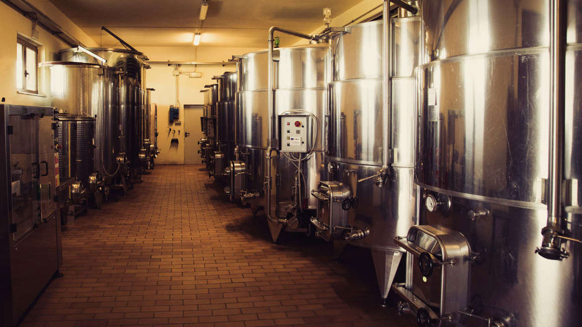 The Process Behind our Award-Winning Wines